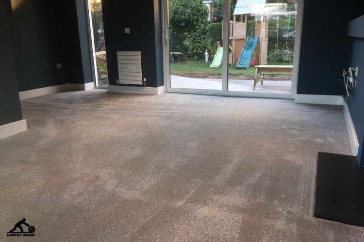 Stainfree Ultra Carpet