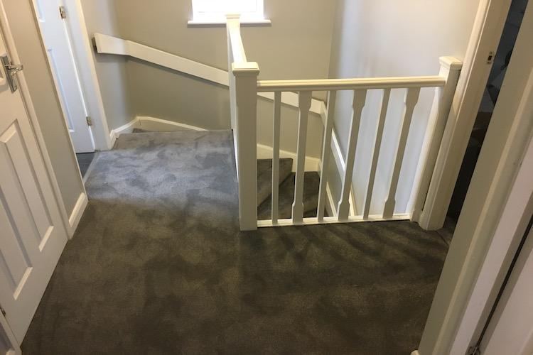 Stainfree Ultra carpet Gunmetal